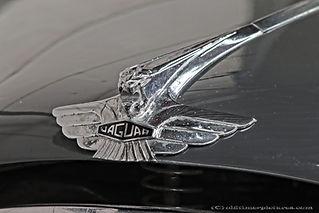 Jaguar Mk VII 3.4 - 1952