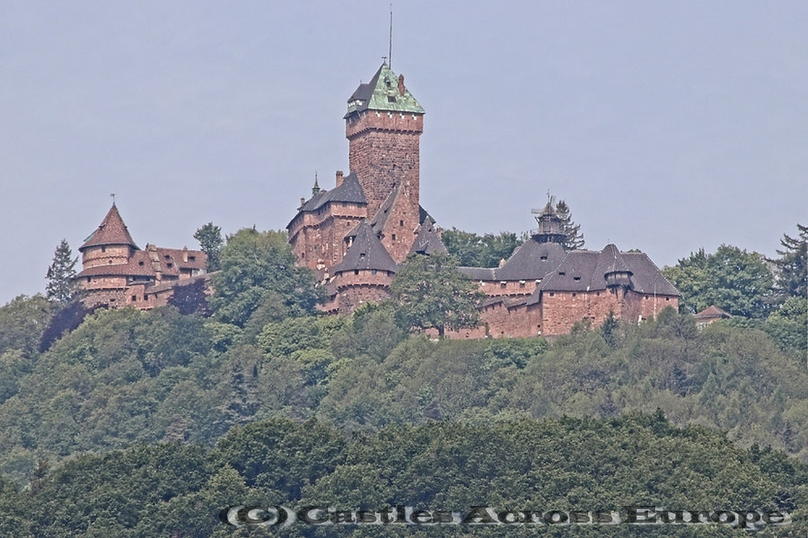 Château de Haut-Koenigsbourgoenigsbourg_IMG_9825a_Chat