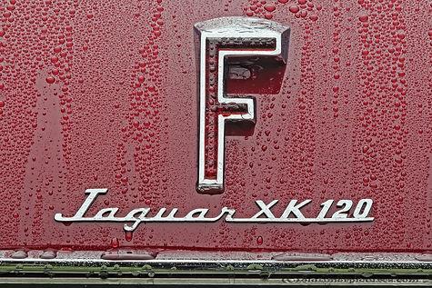 Jaguar XK 120 Supersonic by Frua - 1952