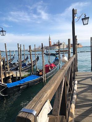 venice goldola dock.jpg