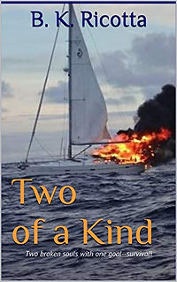 Two of a Kind Digital Book Cover.jpg
