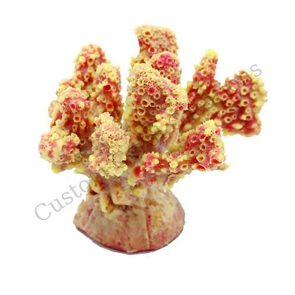 Mini Cauliflower