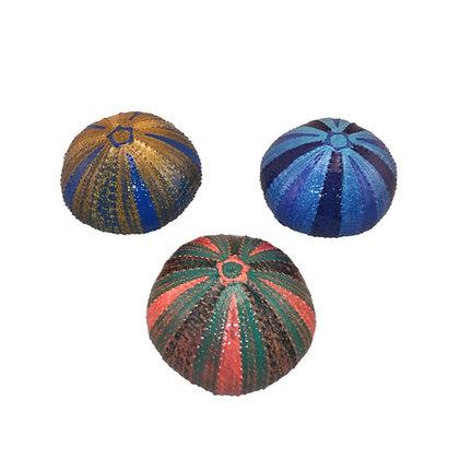 Urchins, Medium  Hand-Painted