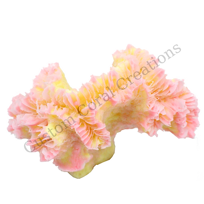 Small Pearl Coral