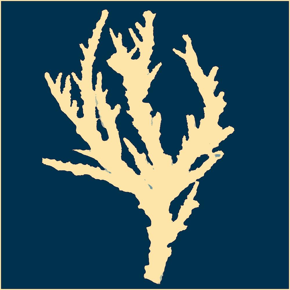 Acropora florida shadow (Artificial Coral)