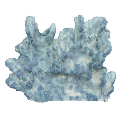 Medium Blue Ridge Cluster