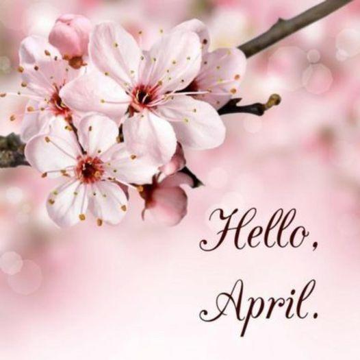 hellow april.jpg