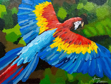 macaw painting, parrot painting
