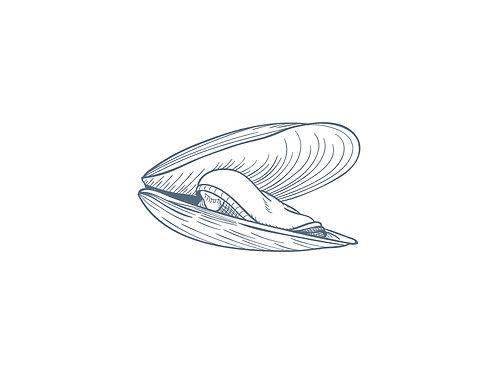 K&H Capital - All Shellfish Bonds