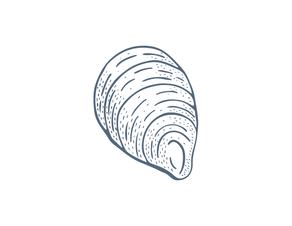 Illust-Element-Shellfish-RGB-DBLUE-03.pn