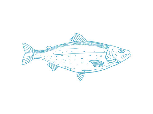 Long Beach Farms Ltd. - All Finfish Bonds