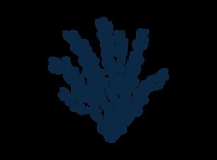 Illust-Element-Seavegetable-RGB-DBLUE-01