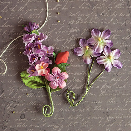 Prima Flower