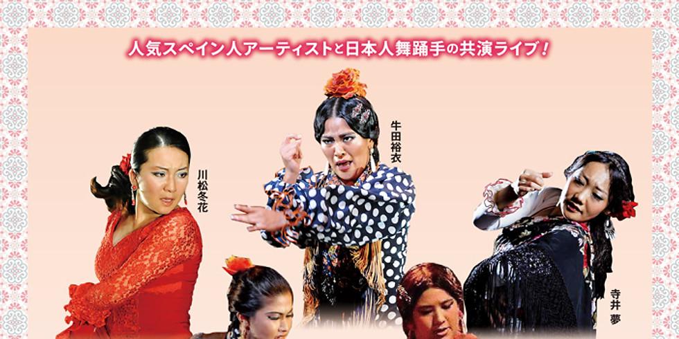 7月11日 サラ・アンダルーサ ライブ