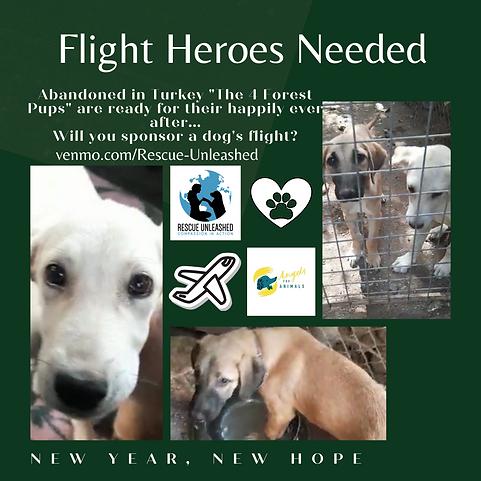 Flight Heroes Needed (7).png