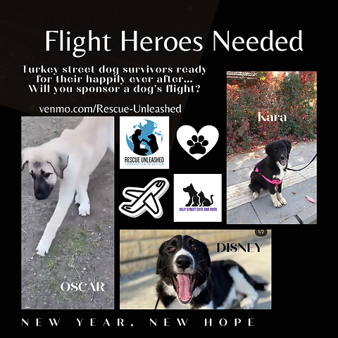 Flight Heroes Needed (6).png