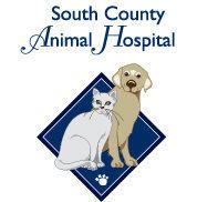 South County Animal Hospital.jpg