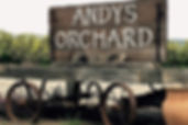andy's orchard.jpg