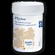 24622 Phyton - 60g.png