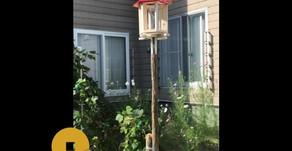 お客様からのお便り#10 小鳥が集う場所