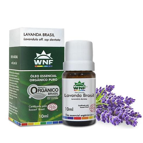 Óleo Essencial Lavanda Brasil Orgânica - 10ml - WNF