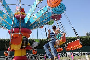 Lolli Swing(2)(2).JPG