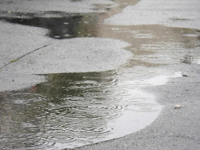 梅雨時期のお掃除「カビ対策」