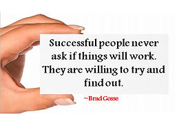 successful people never ask if things will work. They are willing to try and find out.