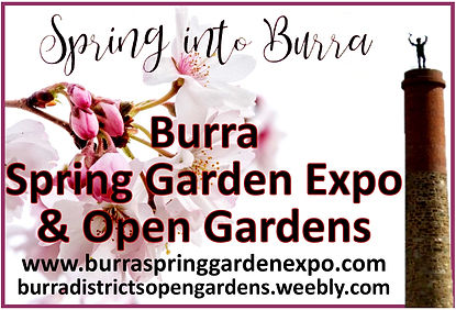 Burra Spring GArdens car magnets.jpg