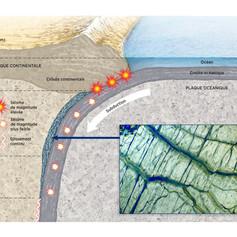 La serpentine dans une zone de subduction