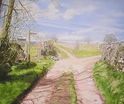 Towards Gypsy Bank, Derbyshire