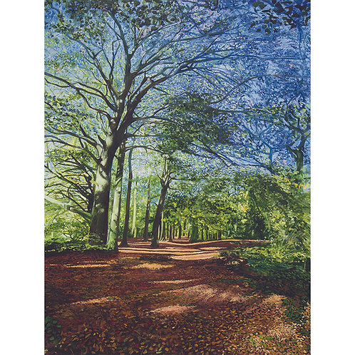 The Permissive Path in Autumn, Charnwood Forest