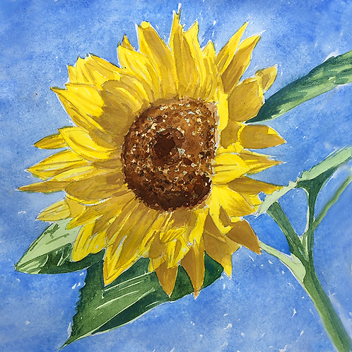 Sunflowers XVII