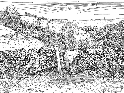 Dry Stone Wall, Beresford Dale, Derbyshire