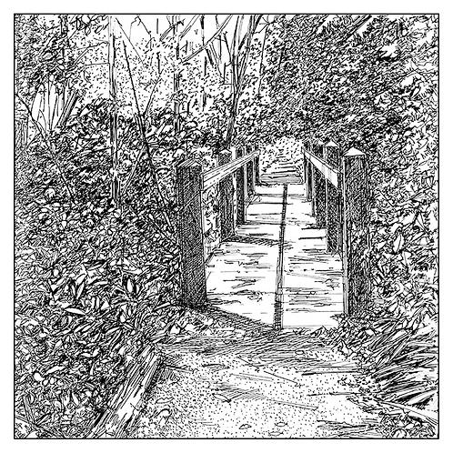 Wooden Bridge in Burleigh Wood