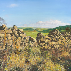 A Wall with a View, Derbyshire