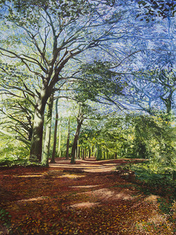 The Permissive Path in Autumn, Leicestershire