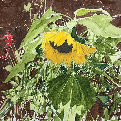 Sunflowers X