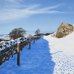 Path Under Snow at Beacon Hill, Leicestershire