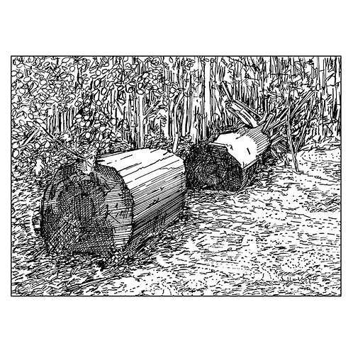 Two Logs, The Outwoods