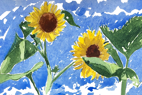 Sunflowers XIV