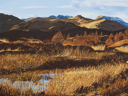 """Light in the Landscape"" – now online!"