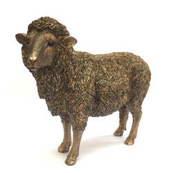 sheep £15