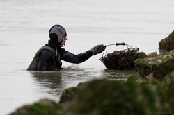 pêcheur - Berck sur Mer