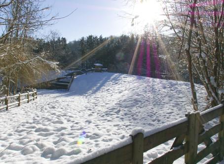 Promenade dans un Val d'Oise enneigé