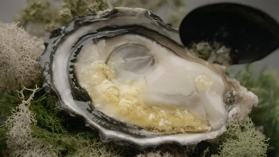 Oysters 05.jpg
