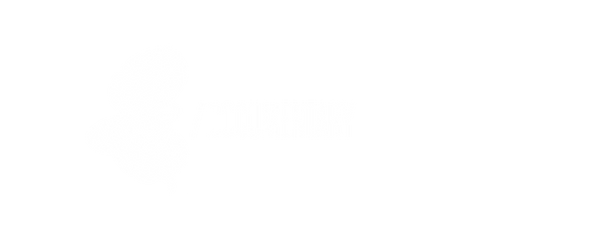 DOCUMENTARY2.png