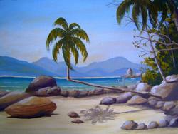 Ilha do Coqueiro