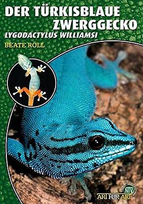 Lygodactylus williamsi Buch.jpg