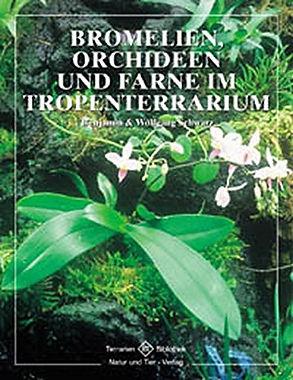 Bromelien, Orchideen und Farne im Tropen